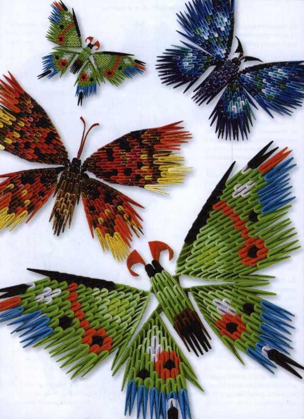 Модульное оригами бабочка схема сборки фото 137