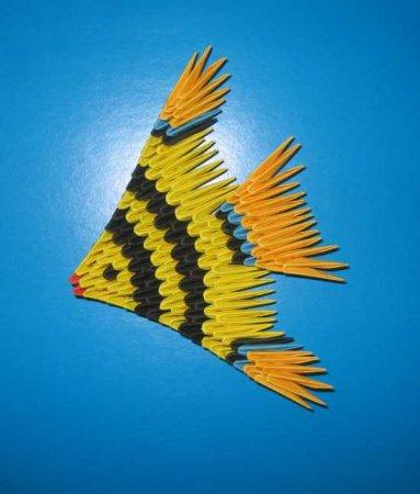 """Рыбка """"Скалярия"""""""
