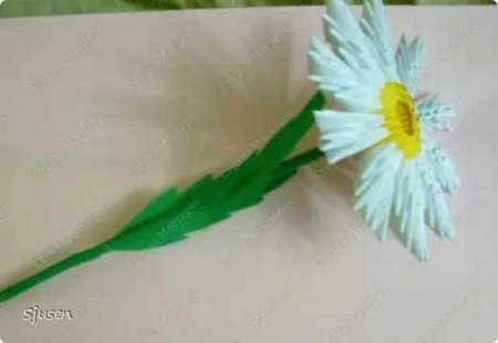 Модульное оригами «Ромашки»