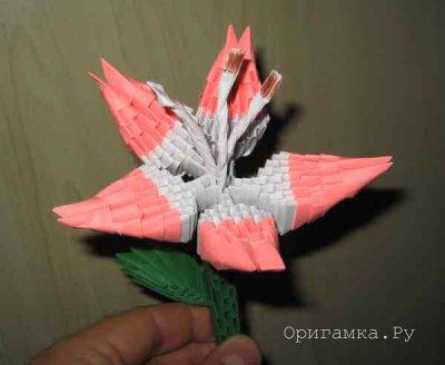 Модульное оригами лилия мастер класс